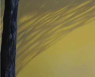 Isabel Botelho sombras de verão