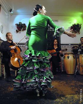 El Flamenco vivo