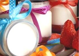 iogurteira-caseira